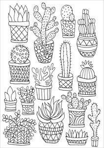 Dessin de plantes Pinterest